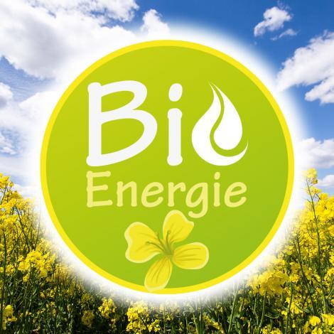 Découvrez notre biofioul à base d'huile de colza cultivé en France
